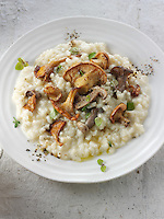 Wiild  chanterelle or girolle (Cantharellus cibarius), Pied de Mouton Mushrooms (hydnum repandum) or hedgehog mushrooms, Pied Bleu of blue foot mushrooms (Clitocybe nuda) risotto