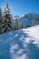 Fresh snow in Swiss Alps