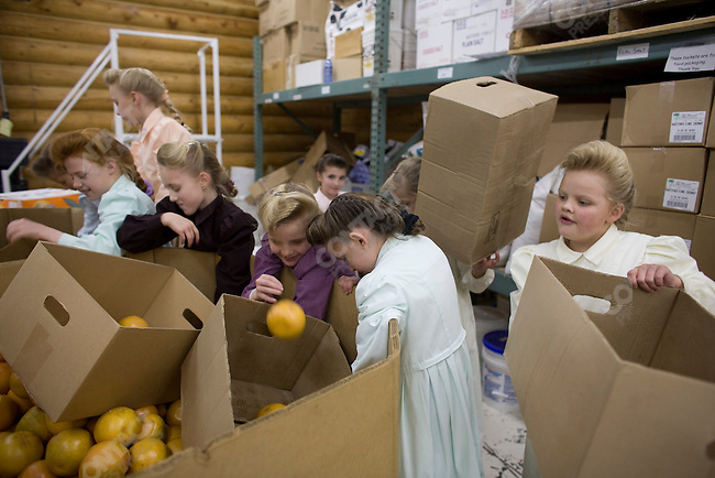 """Fundamentalist Mormon group F.L.D.S.,  Young girls sort boxes of grapefruit in the Storehouse on the """"Yearning for Zion"""" compound in Eldorado, Texas, USA, February 12, 2009"""