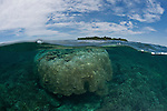 Sipadan Island topside and underwater split-level.