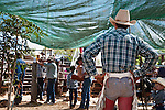 Cowboy at the Chillagoe Rodeo.  Chillagoe, Queensland, Australia