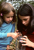 1M17-269z  Praying Mantis being studied by two girls - Tenodera aridifolia sinenesis