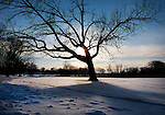 .Winter scenes around Madison, Wisconsin.