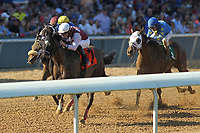 HOT SPRINGS, AR - MARCH 18: Streamline #7, ridden by Chris Landeros before crossing the finish line  of the Azeri Stakes race at Oaklawn Park on March 18, 2017 in Hot Springs, Arkansas. (Photo by Justin Manning/Eclipse Sportswire/Getty Images)