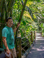 A tourist stands near bamboo on the boardwalk at Hawai'i Tropical Botanical Garden, Onomea, Big Island of Hawaiʻi.