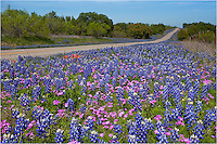Along 152 between Llano and Castell, Texas, this field of colorful wildflowers enjoys a nice spring morning. The roads out here in the Hill Country are winding and the views can be pretty grand at times.