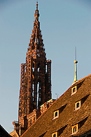 The spire of Strasbourg cathedral soars above the tiled roofs of the neighbouring buildings