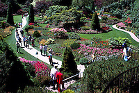 Butchart Gardens at Brentwood Bay near Victoria, BC, Vancouver Island, British Columbia, Canada - Sunken Garden, Summer Flowers