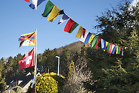 "Switzerland. Canton Aargau. Rüfenah. Yangchen Büchli's garden. Lung ta are tibetan prayer flags of square or rectangular shape, and are connected along their top edges to a long string or thread. The swiss tibetan woman is an Aeschimann's child who arrived 50 years ago in Switzerland to receive custody on a private initiative by an influential Swiss industrialist, Charles Aeschimann. In 1962, Charles Aeschimann agreed with the Dalai Lama to take 200 children and place them in Swiss foster homes and give them a chance for a better life and a good education. Most of the children still had parents in exile or in Tibet, just a few were orphans. The Tibetan flag, also known as the ""snow lion flag"" and the 'Free Tibet flag', was a flag of the military of Tibet, introduced by the 13th Dalai Lama in 1912 and used for the same capacity until 1959. Designed with the help of a Japanese priest, it reflects the design motif of the Japanese military's Rising Sun Flag. Since the 1960s, it is used a symbol of the Tibetan independence movement. The flag of Switzerland consists of a red flag with a white cross (a bold, equilateral cross) in the centre. 25.02.2015 © 2015 Didier Ruef"