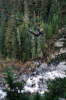 Zip lining. En route to the 2010 Winter Olympics, Whistler, British Colombia, Canada.
