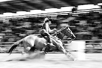 Dirt flies, as a cowgirl guides her horse around a barrel during the barrel racing competion.<br />