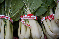 Organically grown bok choy at a farmers market.