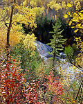 Lower Potato Falls, Iron County, Wisconsin, October, 1993