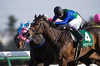 NAKAYAMA,JAPAN-MARCH 12: Tosen Victory #4,ridden by Yutaka Take,wins the Nakayama Himba Stakes at Nakayama Racecourse on March 12,2017 in Funabashi,Chiba,Japan (Photo by Kaz Ishida/Eclipse Sportswire/Getty Images)