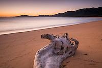 Driftwood on golden beach in Totaranui at sunrise, Abel Tasman National Park, Nelson Region, New Zealand