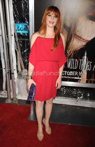 Lauren Ambrose attends the NY film premiere of Where The Wild Things Are at Alice Tully Hall  in New York City. October 13, 2009. Credit: Dennis Van Tine/MediaPunch