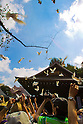 August 15, 2011, Tokyo, Japan - Several people release white doves at Yasukuni Shrine for their will for world peace. Thousands of people visit this shrine to pay their respect to the Japanese war soldiers who died fighting in World War II which marks the 66th anniversary of the end of WWII. (Photo by Christopher Jue/AFLO) [2331]