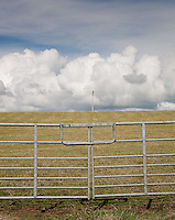 Field gate, telegraph line and white clouds in a field near Stranrear, Scotland