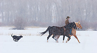 Falling snow just adds to the pleasure of a horseback ride in winter