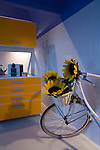Bicycle in the kitchen