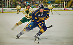 29 December 2013:  Canisius College Golden Griffins defenseman Geoff Fortman, a Freshman from Crystal Lake, IL, in second period action against the University of Vermont Catamounts at Gutterson Fieldhouse in Burlington, Vermont. The Catamounts defeated the Golden Griffins 6-2 in the 2013 Sheraton/TD Bank Catamount Cup NCAA Hockey Tournament. Mandatory Credit: Ed Wolfstein Photo *** RAW (NEF) Image File Available ***