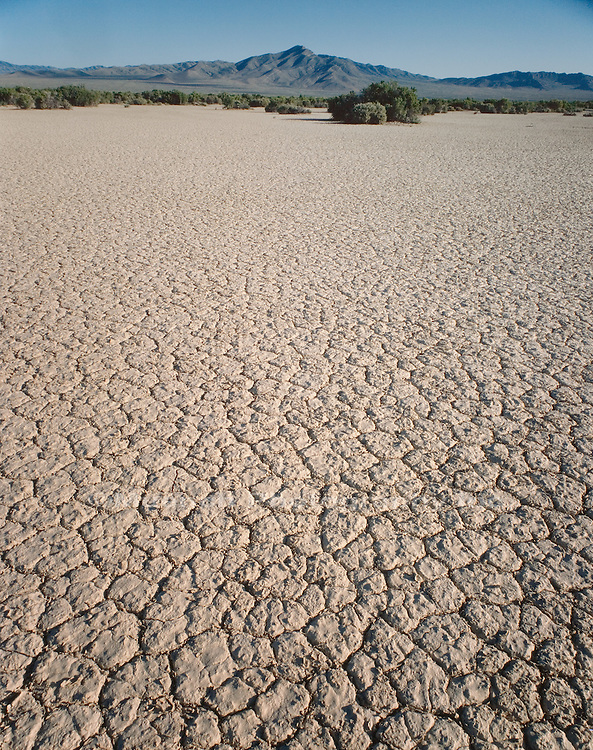 """Salt flats, Snake Valley   NEVADA"""
