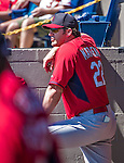 9 March 2014: St. Louis Cardinals Manager Mike Matheny watches play from the dugout during a Spring Training game against the Washington Nationals at Space Coast Stadium in Viera, Florida. The Nationals defeated the Cardinals 11-1 in Grapefruit League play. Mandatory Credit: Ed Wolfstein Photo *** RAW (NEF) Image File Available ***