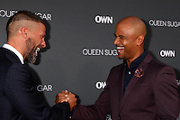 BURBANK, CA - AUGUST 29: Greg Vaughan, Dondre T. Whitfield<br />at the Premiere Of OWN's &quot;Queen Sugar,&quot; Warner Brothers Studios, Burbank, CA 08-29-16Credit:  David Edwards/MediaPunch