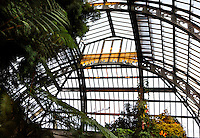 Plant History Glasshouse (formerly Australian Glasshouse), 1834, Charles Rohault de Fleury, Jardin des Plantes, Museum d'Histoire Naturelle, Paris, France. View from below of the metal roof structure lit by the sunset.