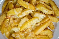 Cheesy Chips or Cheese fries - Apr 2014.