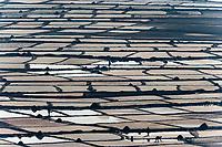 Workers harvest salt, Uganda, Africa