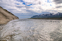 Hofsa River, Atlantic Salmon, Iceland