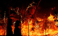 Firefighters work on a bushfire near Sydney September 10, 2013. The Australian bushfire season has started early and is predicted to be a busy one as record high temperatures, strong winds and dry weather hit most of the country. Stringer/VIEWPRESS