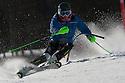 7/03/2015 impulse training & bsa slalom 1