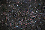 Coins litter the ground near the arcade in Keansburg Amusement Park, NJ. The storm-surge from Superstorm Sandy destroyed several ocean front blocks of Keansburg, including the amusement park, its rides and arcade.