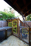 A chicken coop and compost area in a back yard in Eugene, Oregon