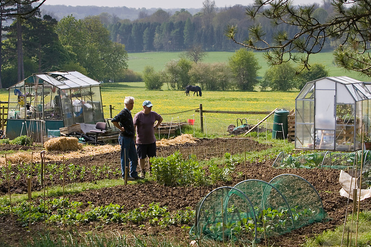 Gardeners chat beside their allotments, Chadlington, Oxfordshire, United Kingdom