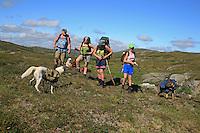 Steinbekken mellom Kråssåa og Høgfjellet. Familien Møllenhus på veg til Schulzhytta. Huskien Scott og Schäferen Razzla bærer hundematen i kløv.