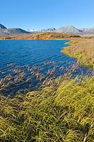 Tundra pond in the Atigun canyon, Endicott mountains of the Brooks Range.