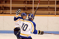 Badger State Winter Games '08 - Squirt Hockey - Rice Lake vs Elmbrook