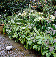A lushly planted flowerbed filled with white tulips, beech leaves and ferns