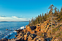 Coastal landscape, Ocean Drive, Acadia NP, Maine, ME, USA
