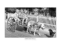 Fine Art Vintage Photo Prints