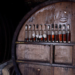 The barrel room at the  Cider Brandy Company in Kingsbury Episcopi..Run by Julian Temperley  the  distillery  uses Kingston Black apples for it's cider production but mixes in other varieties for flavour.