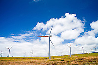 wind turbines, Upolu Airport Wind Farm, Uplolu Point, Hawi, North Kohala, Big Island, Hawaii, USA