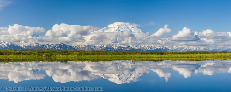 Denali, North America's highest peak reflects in a small tundra pond in Denali National Park, Alaska.