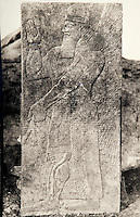 EXCLUSIVE (b/w photo) Winged Genie, unknown source, Khorsabad or Nimrud. Lost at Shatt al-Arab in 1855. Picture by Victor Place...Additional info :..Khorsabad ou Nimroud car le B.M. possède un roi presque semblable: geste, facture, costume mais qui n'a que deux poignards (ici) n'a pas d'ailes et est tête nue avec un bandeau à marguerites en serre tête. Dans les 2 19 à 20 lignes d'inscription coupent le milieu du corps. Epoque d'Assournazirpal (donc Nimroud). A identifier. Provenance inconnue. Khorsabad ou Nimroud (?). 19 lignes d'inscription. Perdu Chatt el Arab 1855. Cliché V. Place.