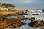 Morning in Pacific Grove