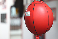 double end striking bag at a local boxing gym