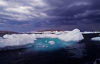 731000005 a clearing storm brings dramatic lighting to the icebergs and ice flows in the dark waters of wager bay in nunavut territories canada